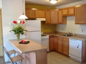 Apartments for rent-The 4111-Kitchen Photo