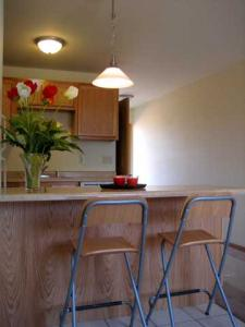 Apartments for rent-The 4111-Kitchen Photo2